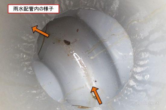 雨水 配管 汚れ